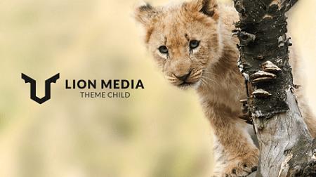ワードプレステーマをSTORK(ストーク)からLION MEDIAに移行したときの違いをまとめる LION MEDIAの感想も合わせて